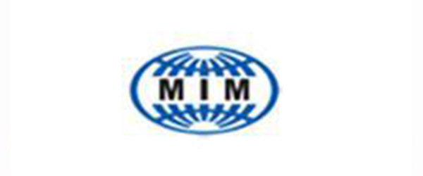 MiM client limo service serbia
